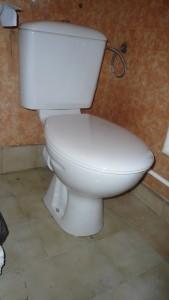 смяна на тоалетна чиния